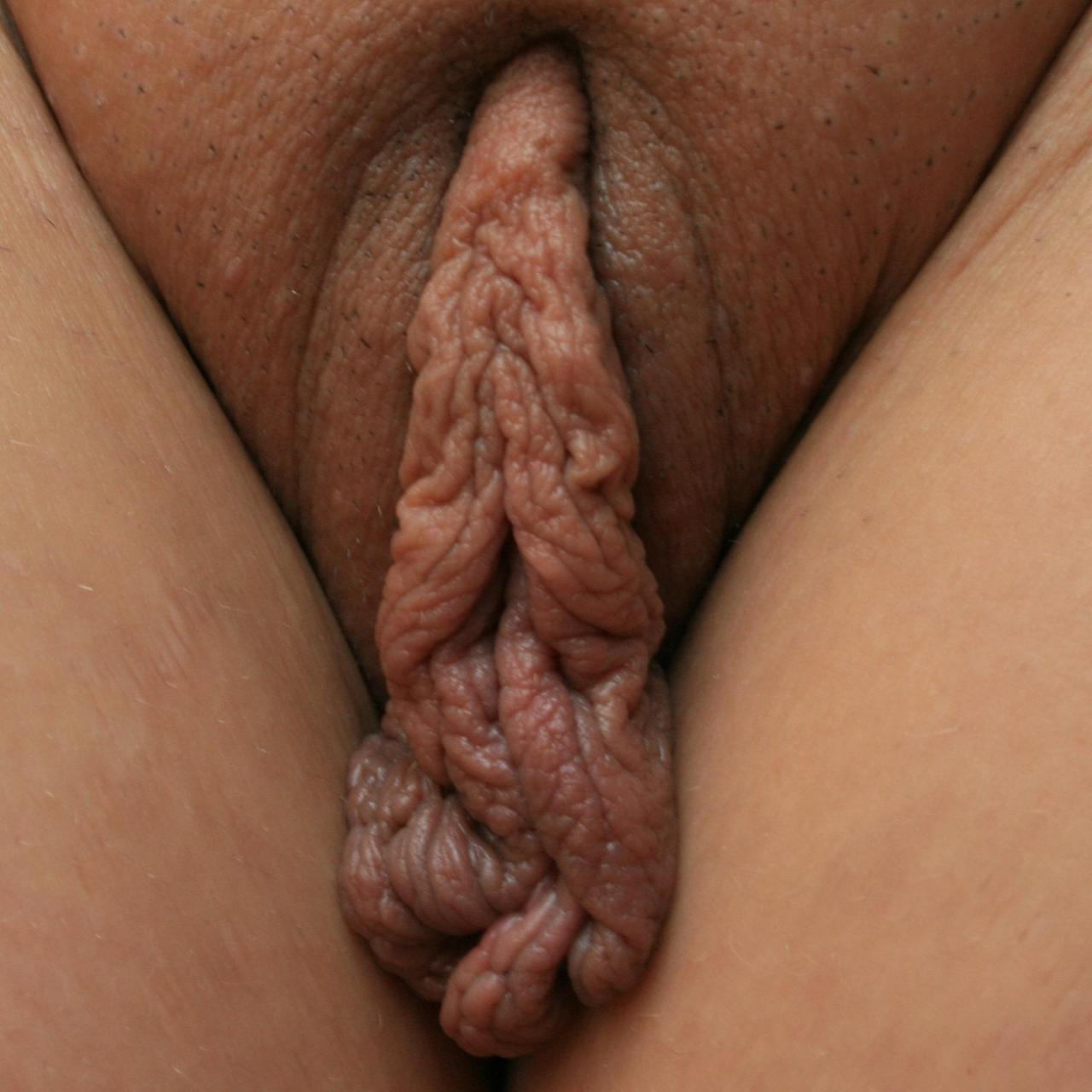 vagina pictures of big