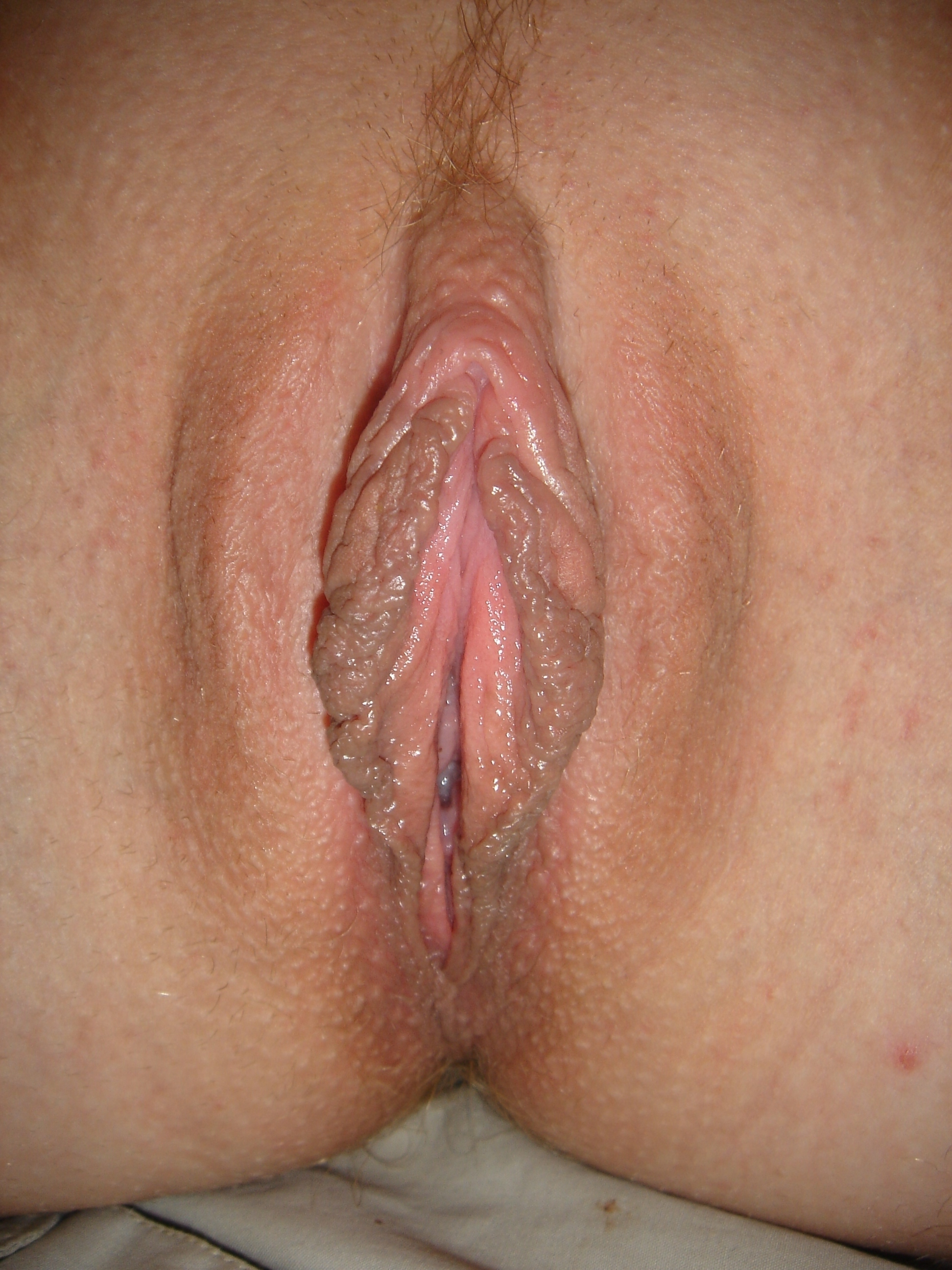 Up pussy open close spread vagina