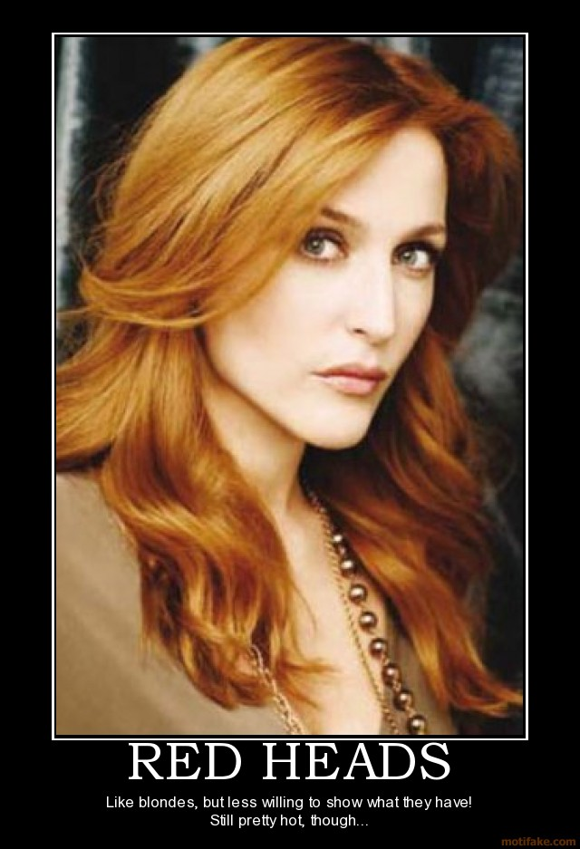 hot red head pics demotivational poster red facebookview heads head
