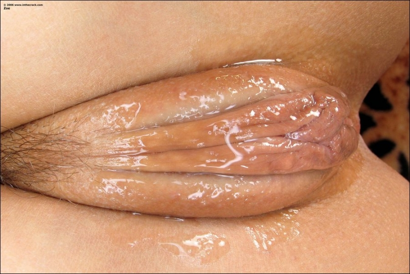Asian vulva close up pics opinion you