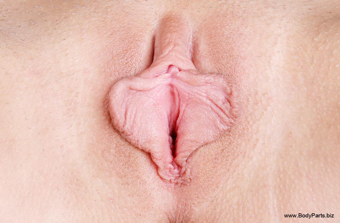 Фото влагалище пухлых 5 фотография