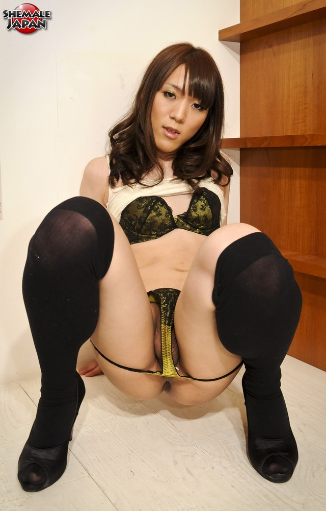 free gallery porn star free gallery pictures asian shemale shemalejapan