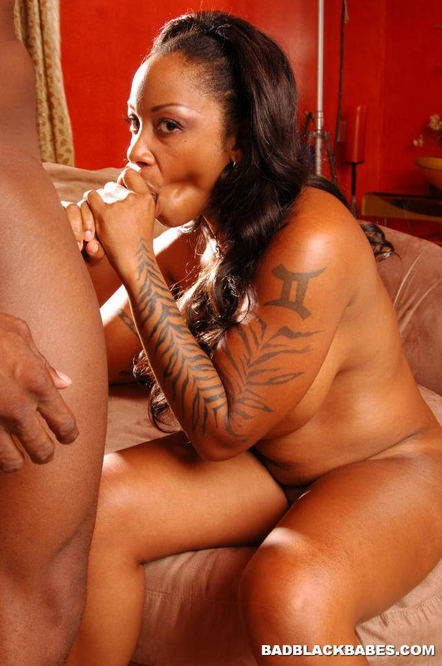 ebony blacks sex pics media hardcore galleries ebony black hunter kitten
