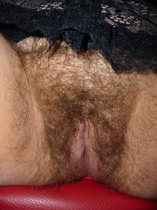 hairy pussy beautiful women beautiful pussy hairy guest