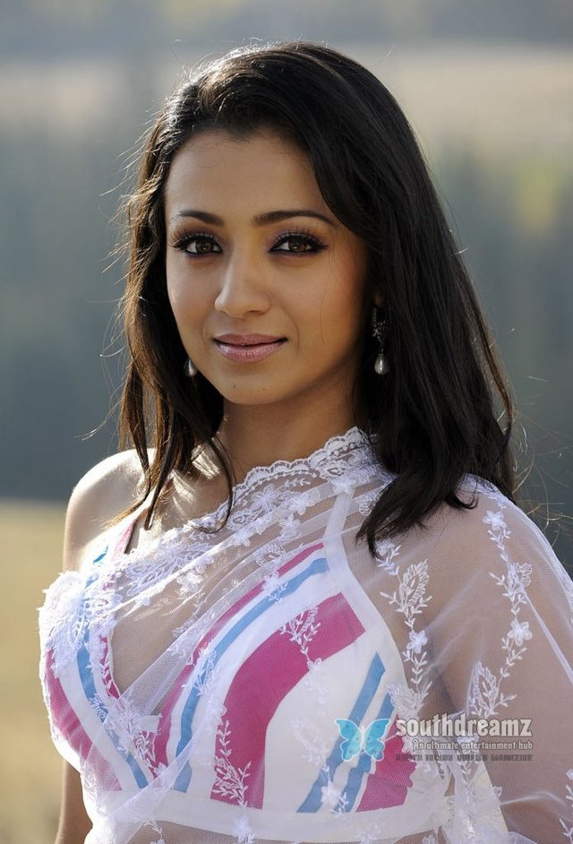 hot and sexy gallery hot sexy stills actress photoshoot telugu trisha saree southdreamz