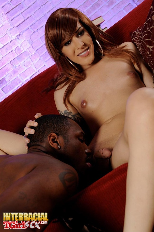 interracial sex pics galleries interracial brunette gets shemale