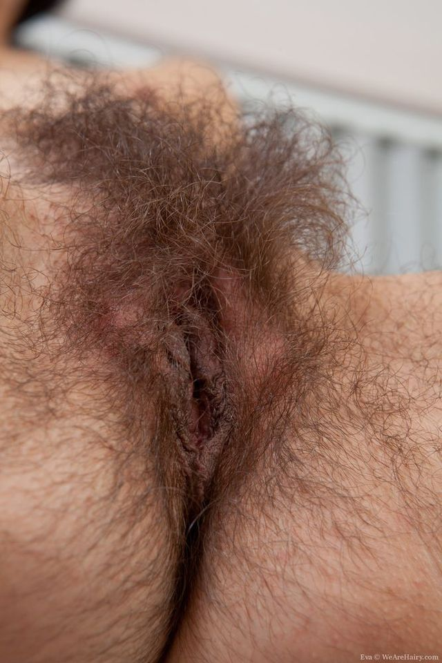 mature pussy pics picture pussy close very mature bushy picpost thmbs