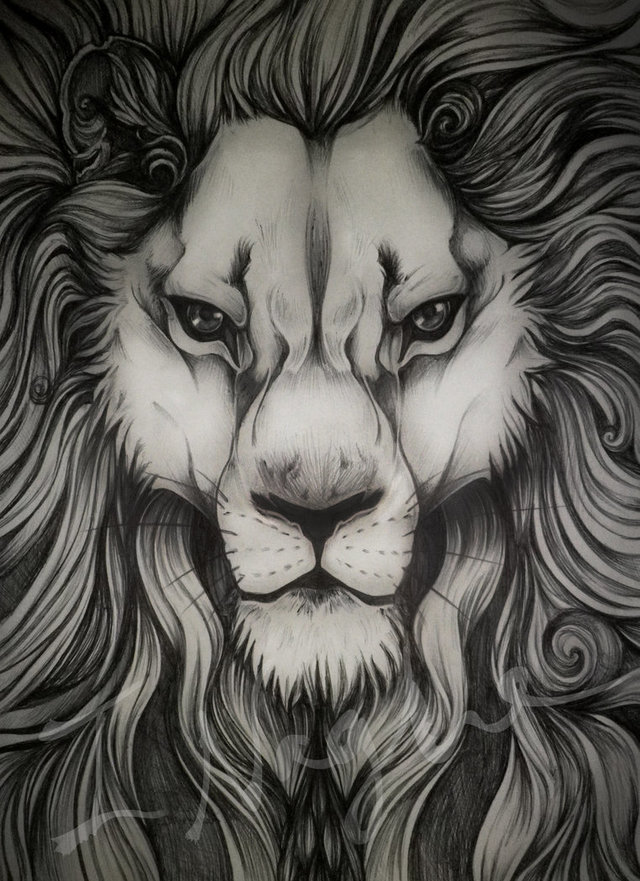 pic of a big ass ass art lion pre sketch overly detailed biro bluelioness