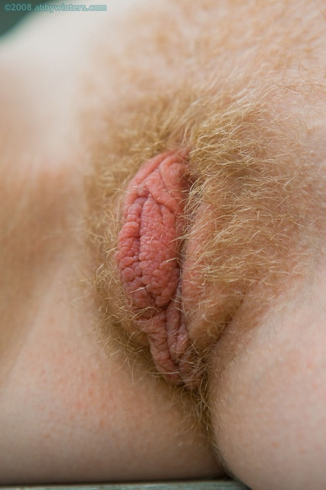 pictures of huge pussy lips pussy galleries hairy huge lips abbywinters noelle