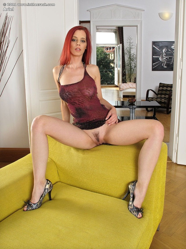 red head pussy gallery media pics pussy redhead