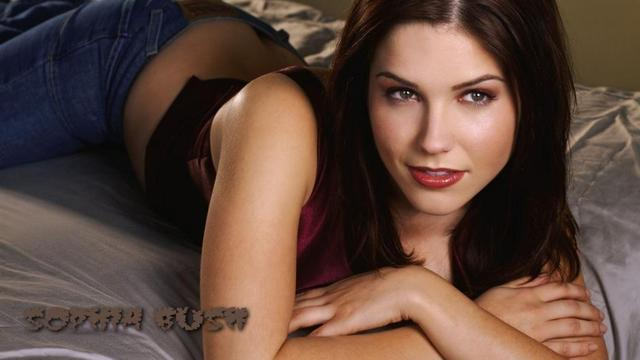 hot sexy feet pics photos gallery hot sophia sexy feet bush sophiabush