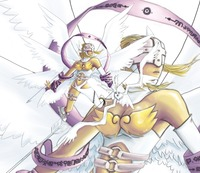 digimon porn angewomon ray