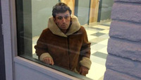 like love make porn star uwtvlhtm original will love james deen ikea monkey