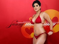 porn wallpaper sunny leone sexy wallpaper bollywood canadian porn star