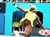 ass pics photos venus williams ass tennis clubs