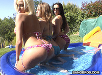 best ass image pictures three best asses porn ass parade