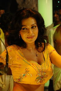 big big boob photos asha saini boob hot dance still gallery photo size