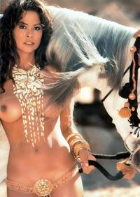 celeb nude pic gallery celebs nude galleries brooke burke pictures photo picture