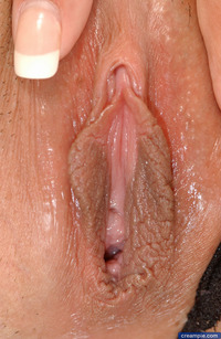 close up pic of a vagina feature shy love