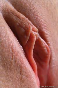 close up vagina photos vagina closeup