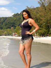 free hot bikinis gallery nami bikini namitha hot photos