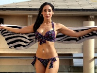 free hot bikinis wallpapers sofia hayat hot bikini