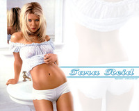 free sexy naked wallpapers tara reid sexy wallpaper