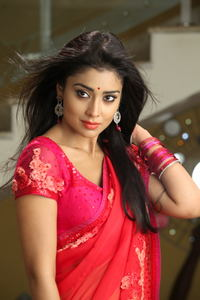 hot and sexy gallery sriya saran pavitra movie stills glorious elegant shriya ethnic designer saree collection