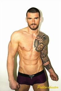 hot and sexy porn stars stuart reardon pablo chester