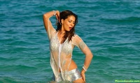 hot beach porn kim sharma hot beach stills