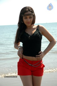 hot big hips pics gallereys spicy normal nisha kothari hot stills gallery large