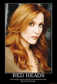 hot red head pics demotivational poster red heads head facebookview