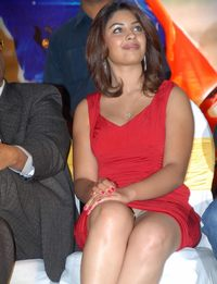 hot up skirt pictures actress richa hot skirt pics