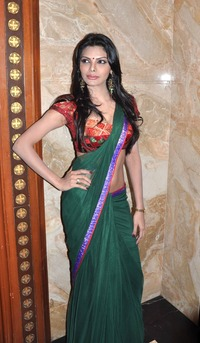 image of hot porn sherlyn chopra hot photos saree navel
