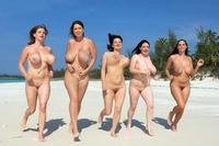 naked beach pics bare naked beach babes