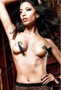 nipple sexy photos upload different colors hot sexy women photo nipple covers pasties mod product
