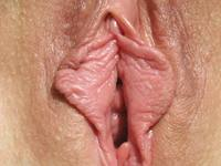 perfect vagina close up pussy