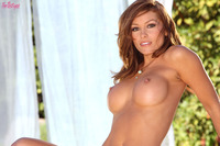 perky nipples galleries girls heather vandeven showing off perky nipples