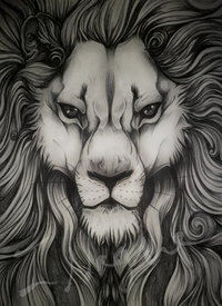 pic of a big ass pre ass overly detailed biro sketch lion bluelioness art