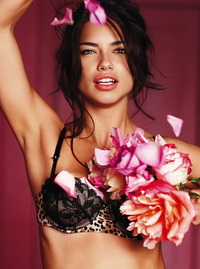 see through lingerie pussy adriana lima sexy see through victoria secret lingerie pussy lip slip tajcelebz