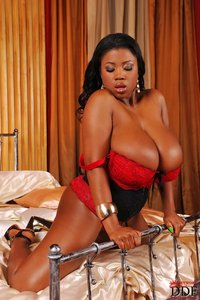 sex ebony xxx media original gargantuan mammaries ebony queen maserati xxx does ddfbusty bnc