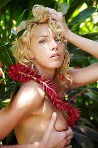 sexiest naked celebrities girls sexy naked nude tits boobs photo selection glamur celebrities