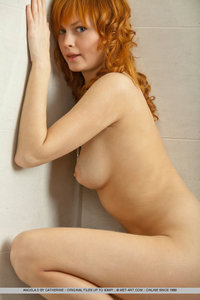 sexy nude pic sexy nudes met art redhead flaunts naked body bathroom entry