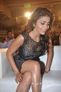 short skirts hot gallery actresses tollywood shriya saran hot short skirt pictures