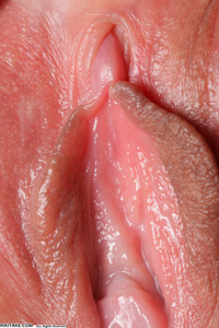 up close vagina picture data dbb bae aba show