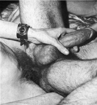 vintage sex pics vintage gay photos porn vehement