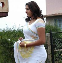free hot sexy pictures namitha sexy hot photo gallery