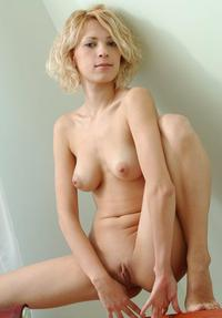 shaved woman pussy gallery curly blond woman shaved pussy adorable mix glamorous women